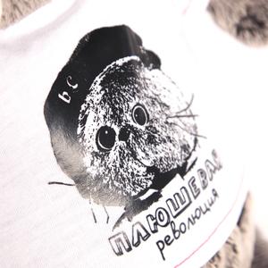 Басик в футболке (Ks22-074)
