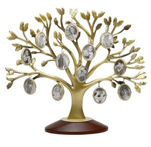 Генеологическое дерево на 12 фото(323087)